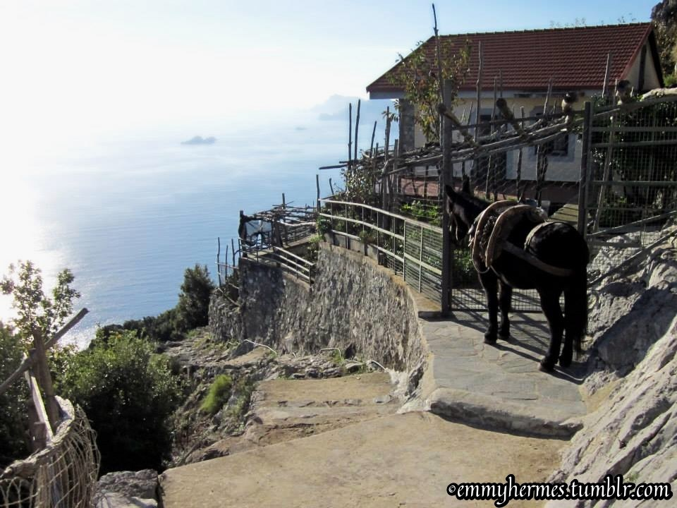 Amalfi Coast - Path of the Gods hike